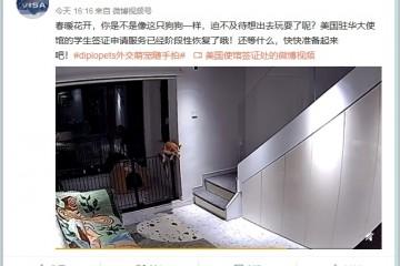 熊丙奇美使馆签证处把留学生比成狗遭怼关键是谁在怼
